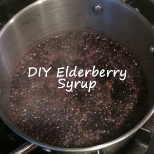 DIY Elderberry Syrup Pic 500x500